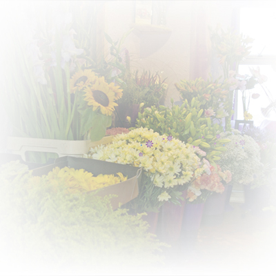 Bloomin Magic Florists based in Livingston Village West Lothian, Scotland